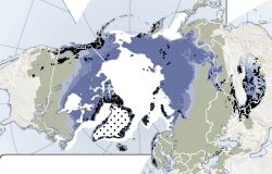 Cryosphere, world map over ice, snow, glaciers, permafrost and ice sheets